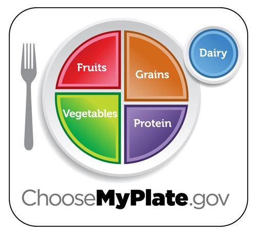 Picture of USDA's MyPlate- a plate sectioned into 4 parts-fruit, vegetable, grain, protein and includes an extra place for dairy.